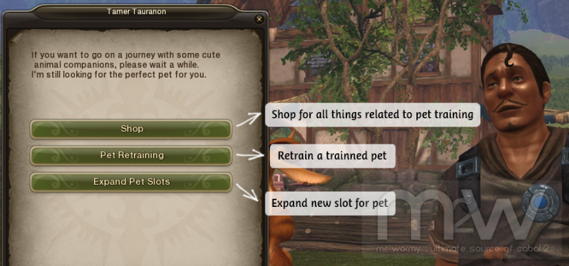 20150808_cb2_all_about_pet_npc_options